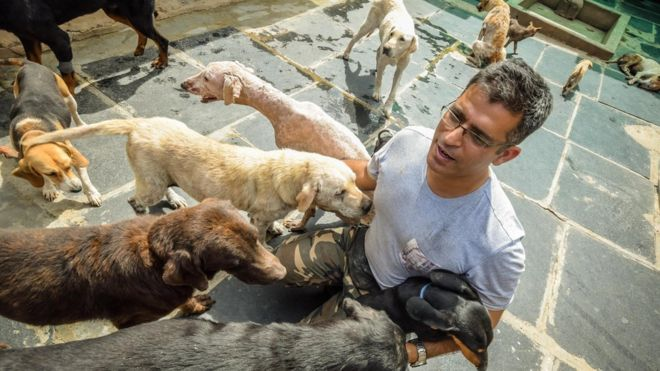 Rakesh Shukla – The Messiah of 735 Abandoned Dogs